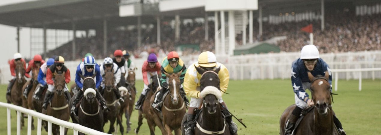 Insiders Tips for Galway Races